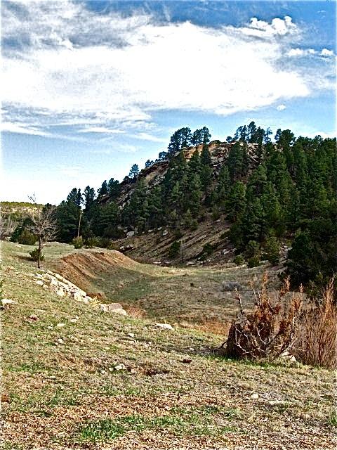 Existing ruts near Las Vegas NM