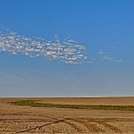 Typical scenery in west Kansas with existing ruts