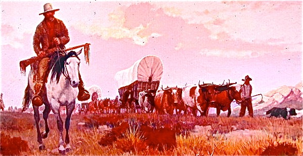 Oxen pulled most wagons after the 1840s